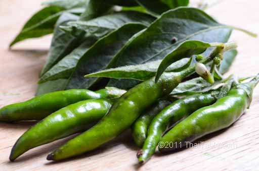 green thai chili peppers