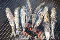 grilled sardines step 2