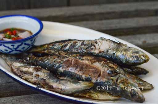 grilled sardines recipe