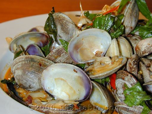Spicy clams with basil recipe thaitable spicy clams with basil sciox Gallery