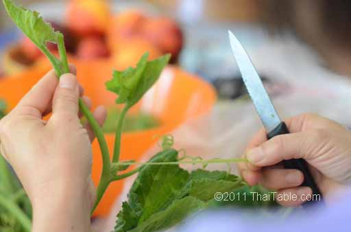 vegetarian stir fried pumpkin shoots step 2